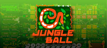 Video Bingo Jungle Ball